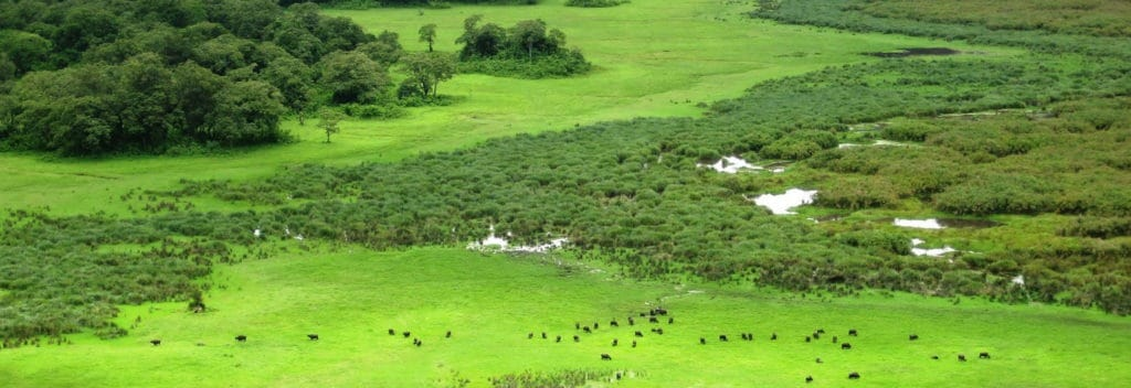 Places to visit in Arusha; Arusha National park