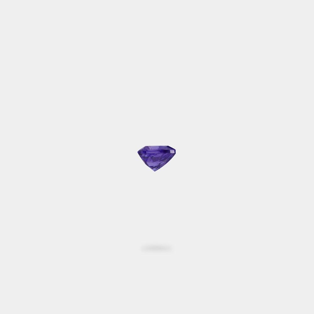 0.79 Carats Trilliant Shaped Loose Stone