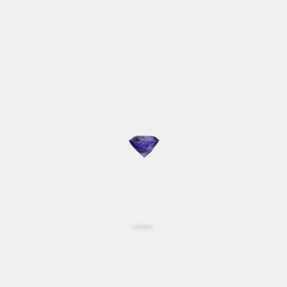 0.49 Carats Round Shaped Loose Stone